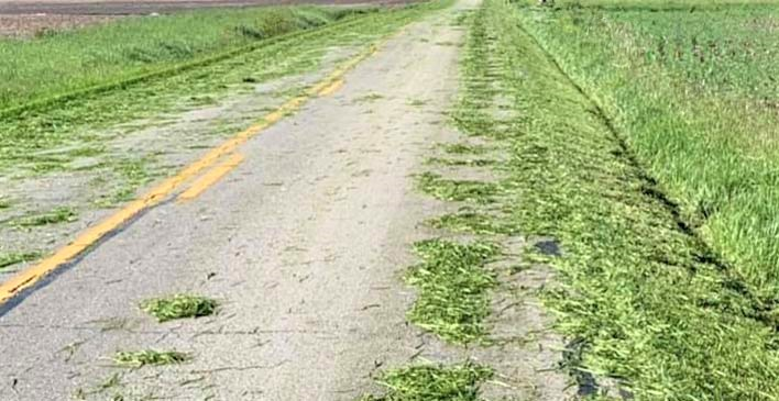grass clippings kill motorcyclists