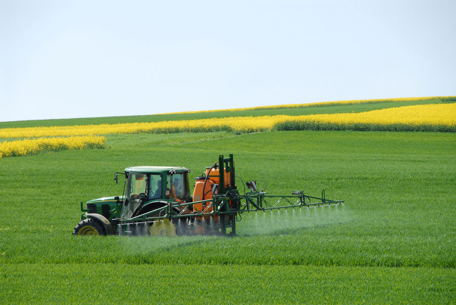 Roundup sprayed on farm crops