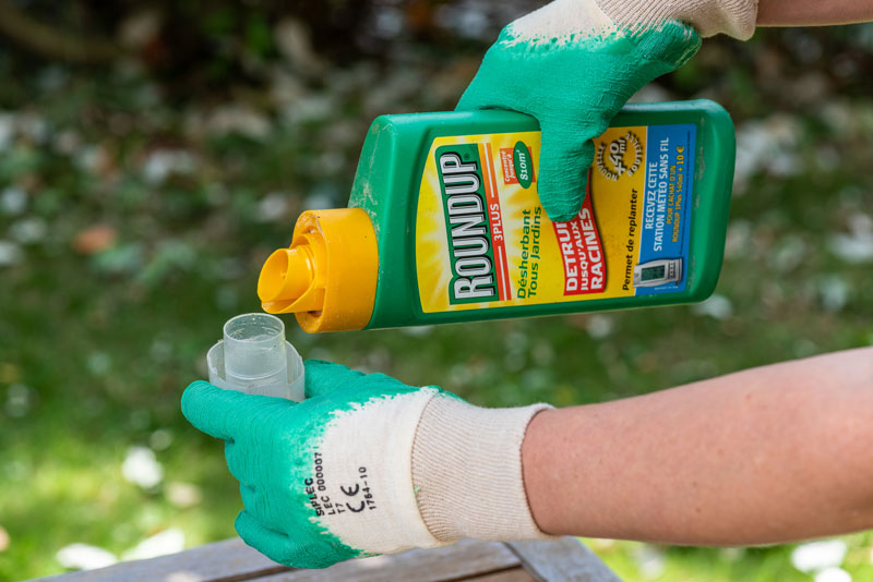 Roundup being applied in home garden