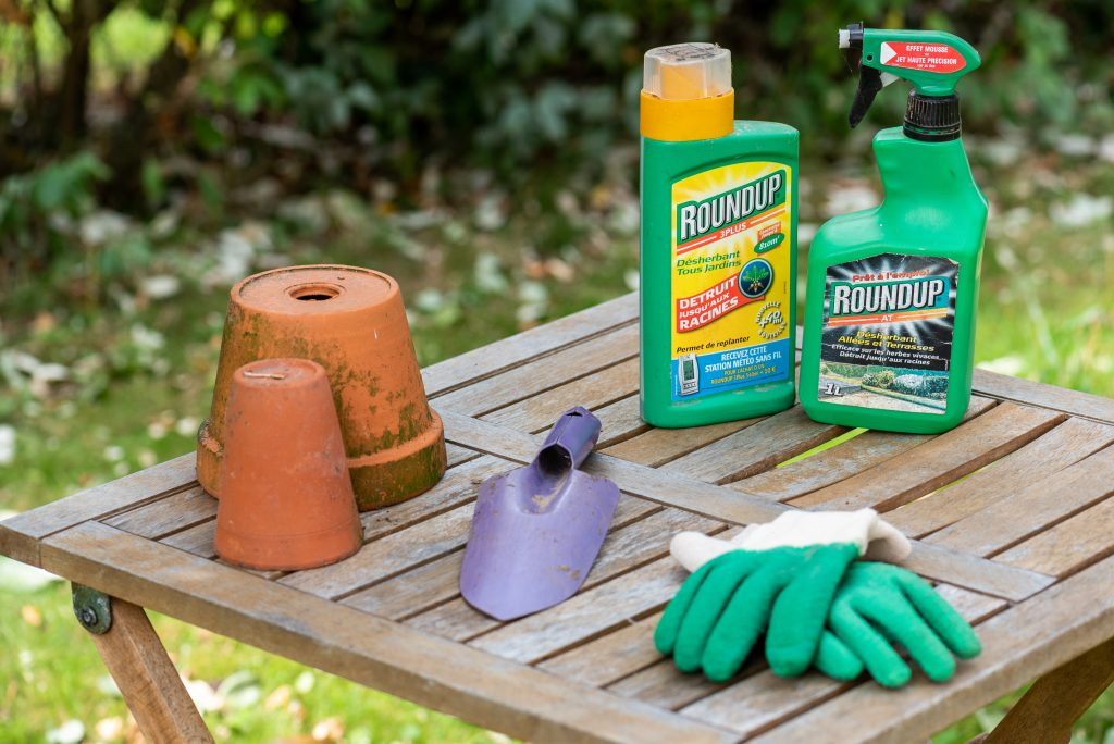Could Your Cancer Be The Result of Using Roundup in Your Lawn or Garden?
